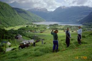 Slåtten på Rabba 1998