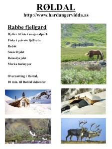 Hardangervidda.as